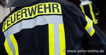 Hoher Sachschaden durch Brand in Waldgebiet bei Walldorf - Echo Online