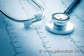 [B. Braun (Germany), CR Bard (US), Cardinal Health (US), Etc] Que Se Passe-T-Il Dans Le Secteur Vascular Biosynthetic Grafts? Analyse Des Concurrents Marketing - Gabonflash - Gabon Flash
