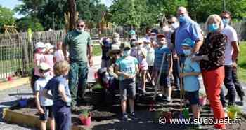 Biganos : plantation aux jardins partagés au parc Dupin - Sud Ouest