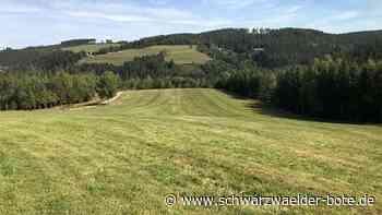 Flächennutzungsplan der Raumschaft - Naturschützer lehnen geplante Bebauung ab - Schwarzwälder Bote