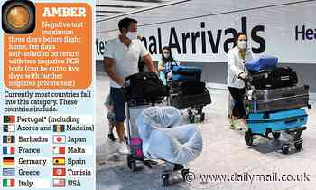 Home Office is putting holidaymakers' health at risk by sending 'unvaccinated officials'