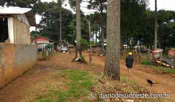 Projetos buscam auxiliar a realização do sonho da casa própria em Mangueirinha - Diário do Sudoeste