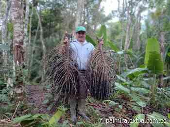 En la Amazonía, cinco proyectos productivos sostenibles beneficiarán a 1100 familias - Extra Palmira