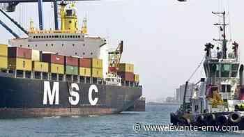 MSC competirá con Boluda en el Puerto de Las Palmas por el servicio de remolque de buques - Levante-EMV