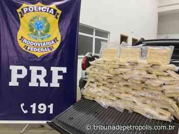 PRF faz maior apreensão de drogas no ano, na rodovia Rio/Teresópolis: 100 quilos de pasta base de cocaína | Tr - Tribuna de Petrópolis