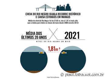 Nível do Rio Negro em Manaus ficou quase 2 metros acima da média dos últimos 20 anos - revista piauí