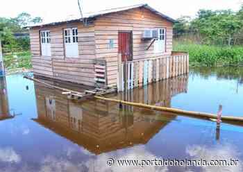 Cheia: Águas do Rio Negro não sobem há cinco dias - Portal do Holanda