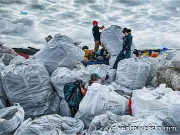 COVID-19: B.C. tour operators stay afloat during pandemic cleaning up marine debris