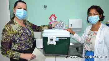 Pedreira recebe a primeira remessa da vacina Pfizer - ACidade ON