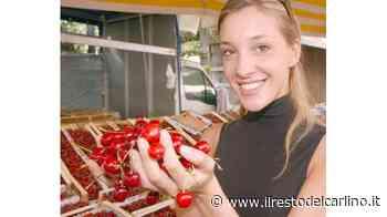 Vignola, i produttori di ciliegie oggi in piazza con i banchi. Poi bolidi e musica - il Resto del Carlino