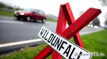 2020 weniger Verkehrsunfälle in Auerbach und Vilseck - Onetz.de