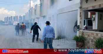 Dengue en Tamaulipas Intensifican las acciones de fumigacin en Matamoros - Hoy Tamaulipas