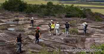 Vichada, un paraíso ecoturístico en los Llanos Orientales - El Colombiano