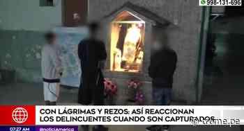 Delincuentes lloran, ruegan y hasta rezan a todos los santos para que policía no los meta presos | VIDEO - Diario Trome