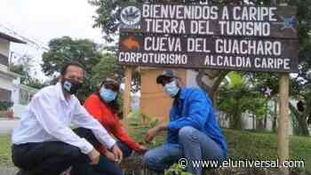 Plan de arborización comenzó en el municipio Caripe de Monagas - El Universal (Venezuela)