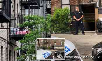 Naked Brooklyn mom threw newborn baby and son, 2, out window before jumping herself