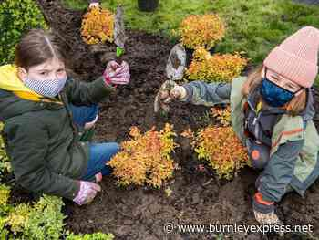 Green-fingered Ribble Valley Brownies discover the joys of gardening at Waddow Heights - Burnley Express