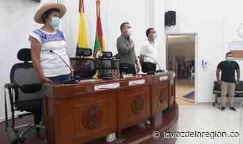 Por cuenta del COVID-19, Concejo de Neiva continúa sesionando de forma virtual - Huila