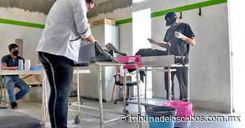 Jornada de esterilización canina y felina en San Antonio - Tribuna de los Cabos