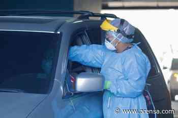 Panamá registra 841 nuevos contagios y 6 muertes por la Covid-19 en las últimas 24 horas - La Prensa Panamá