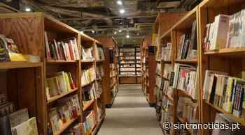 Biblio'férias nas Bibliotecas Municipais de Sintra - Sintra Notícias