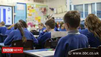 Transfer tests: More than 23,500 children find out school places
