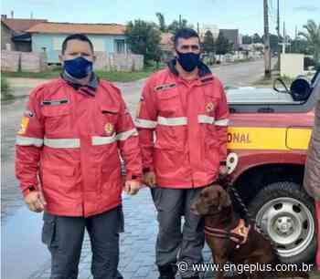 Homem que estava desaparecido é encontrado na região de Balneário Campo Bom - Engeplus