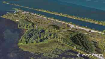 Kahnawake working to reclaim its lost access to the river - CBC.ca