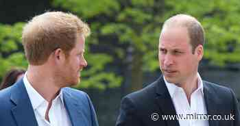 Prince Harry heartbreak as he 'can't repair relationship' with William before reunion - The Mirror