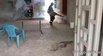 Piura: distrito de Chulucanas en alerta por casos de dengue - LaRepública.pe
