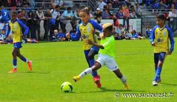 Cognac : le tournoi des jeunes de l'UACF va mettre fin à des mois de frustration - Sud Ouest