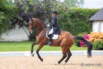 Achleiten: Österreichische Olympiaqualifikation + Isabell Werth   Equestrian Worldwide   Pferdesport weltweit - EQWO - Equestrian Worldwide