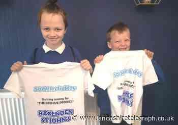 Brothers raise over £350 for school mental health project