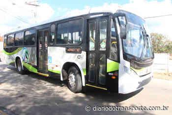 Andradas (MG) vacina motoristas de ônibus e cobradores contra covid-19 neste sábado (12) - Adamo Bazani