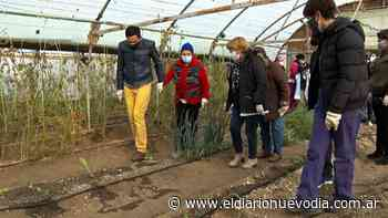 Residentes del Hogar de Ancianos visitaron el Invernadero Municipal de Caleta Olivia - El Diario Nuevo Dia