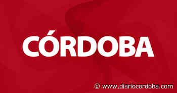 Una película muy mala - Diario Córdoba