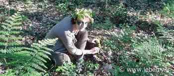 Promenons-nous dans les bois de Vierzon, à partir de samedi - Le Berry Républicain