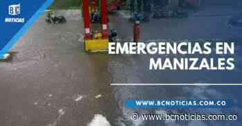 Aguacero causó inundaciones y caída de árboles en Manizales - BC NOTICIAS - BC Noticias