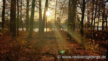 Waldfriedhof in Olbernhau geplant - Radio Erzgebirge