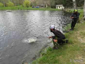 L'Area Cup, un tournoi de pêche national fait étape à Bernay le 13 juin - actu.fr