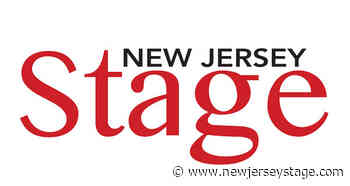 2021 New Jersey International Film Festival Interviews with Paradise Director Immanuel Esser - New Jersey Stage