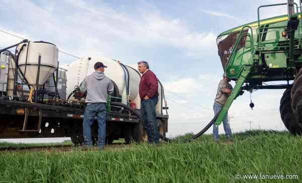 ¿Qué sabemos sobre biocombustibles? Del impacto ambiental favorable al desarrollo de las economías regionales