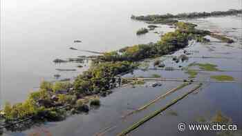 Manitoba government deemed partially responsible for 2011 flooding of Lake Manitoba