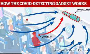 Covid 'alarm' that can SMELL if someone has infection: Device can detect if someone has virus