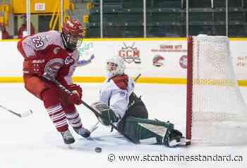 St. Catharines mayor endorses GOJHL bid for junior A status - StCatharinesStandard.ca
