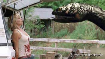 TV-Warnung für heute: Dieser Schlangen-Horror mit David Hasselhoff ist zum Würgen
