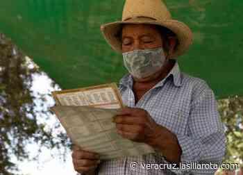 En este municipio de Veracruz 2 candidatos empataron, ¿Qué sigue? - La Silla Rota