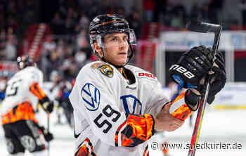 Eishockey: Maximilian Adam bei den Wild Wings im Anflug - SÜDKURIER Online