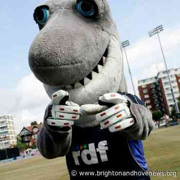Sussex beat Hampshire by nine wickets in first Hove T20 clash - Brighton and Hove News