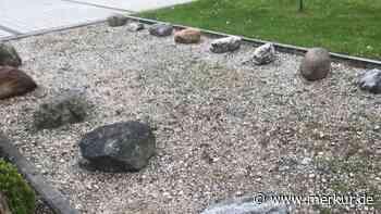 Verbot von Steinwüsten und Schottergärten - Merkur Online